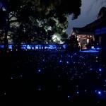 【京都紅葉スポット】紅葉の赤、静寂の青、幻想的な雰囲気に包まれる『青蓮院門跡』