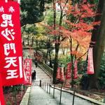 【京都紅葉】『そうだ京都、行こう。』でも有名になった赤絨毯「毘沙門堂」