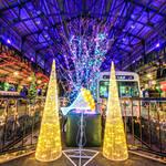 【京都イルミネーション 】クリスマスムードに癒されます♪『イルミステーション in 八瀬』【八瀬比叡山口駅】