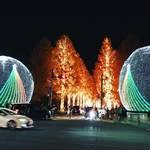 【夜の京都ぶらり】86万球の輝きは市内最大級!ファンタスティックに闇夜を彩る「ロームイルミネーション2019」