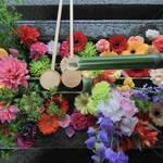 【京都花めぐり】カラフルな花手水に癒される 東福寺塔頭「勝林寺」