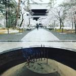 【京都お寺めぐり】京都屈指の観光名所冬らしい景色ようやく☆雪化粧の水路閣も☆「南禅寺」