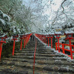 【雪の京都】京の奥座敷「貴船神社」は自然豊かで雪国のようでした。