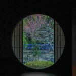 【京の冬の旅】期間限定の寺宝公開など見どころ多数♪『泉涌寺別院雲龍院』【東山エリア】