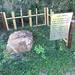 【保存版】京都あるある!?学校の中にある史跡☆歴史的名城址や伝説の石まで【厳選4スポット】
