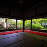 【京の写真旅】大原宝泉院の春 ~おうちで京都旅行気分~
