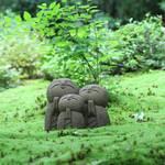 【京の写真旅】洛北詩仙堂の春〜おうちで京都旅行気分〜【一乗寺エリア】