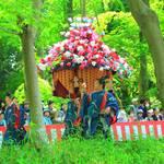 【京の写真旅】新緑の中、いにしえの伝統を伝える時代行列「葵祭」