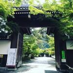 【2020京都最新】紅葉の名所『永観堂』は青もみじの名所でもあり!初夏の風薫る静寂の緑☆