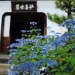 【特別拝観】新庭園「鶴鳴九皐」が完成、甘茶庭に癒される「建仁寺霊源院」【京都花めぐり】