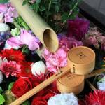 【京都花めぐり】6月は毎週花手水が楽しめます♪東福寺塔頭勝林寺【癒し】
