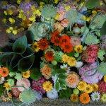 【6月限定】斬新で美しい花手水に癒される「北野天満宮」【京都花めぐり】