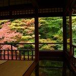 【秋の拝観】例年大行列の「瑠璃光院」は予約制に!要チェックです♪