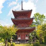 大河ドラマ『麒麟がくる』ゆかりの地『宝積寺』で福徳を授かろう!