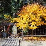 【御所東】萩の名所『梨木神社』にはあの人の歌碑がある!