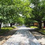 【京都】醍醐さんぽで四季の絶景を味わおう