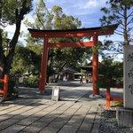 【2020京都紅葉最新】四季折々の花の名所!『紅葉八景』が楽しめる穴場「城南宮」