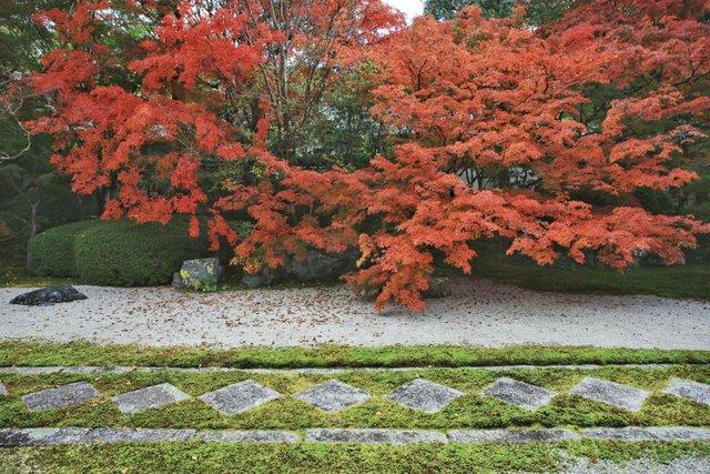 【京都紅葉2020】真っ赤な紅葉がお出迎え♪紅葉の人気スポット『南禅寺天授庵』