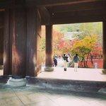 【2020京都紅葉最新】洛東の名所パトロール☆南禅寺界隈~哲学の道【6スポット】