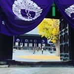 【2020京都紅葉最新】都会のオアシス的銀杏の黄金じゅうたん☆お寺カフェもあり「佛光寺」