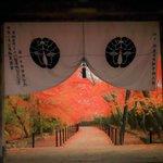 【京都紅葉2020】一度は眺めてみたい門越しの風景がある紅葉名所。長岡京市「光明寺」