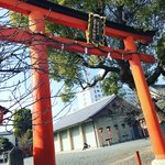 【京都神社めぐり】お酒の神様の御祭では御神輿祀る「松尾大社 西七条御旅所」