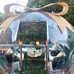 期間限定!ドームでシャンパンとアフタヌーンティー「フォーシーズンズホテル京都」