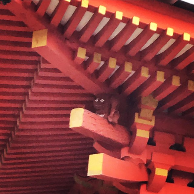 【穴場】三重塔に潜む『隅鬼』を探せ!京都と奈良の府県境にある花の寺「岩船寺」