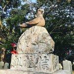 【京都珍狛】『狛鳩』あり境内は鳩だらけ!歌舞伎 市川團十郎ゆかり「三宅八幡宮」