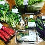 【京都野菜】春の山菜も登場!週末イベントでは有名料理研究家も「里の駅大原」