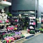 【京都花】大切な人に花束を☆華道家元御用達・いけばな発祥地前の老舗「花市商店」