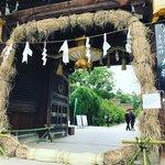 【京都ぶらり】夏越の祓『茅の輪』も登場☆季節の花手水や七夕飾りも「北野天満宮」