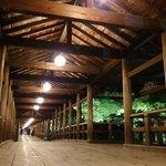 【ライトアップ】もみじの名所「東福寺」で過ごす涼しい京都の夜