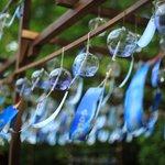 【夏の風物詩】約800個の風鈴と風車が楽しめる~招福の風~「水無瀬神宮」