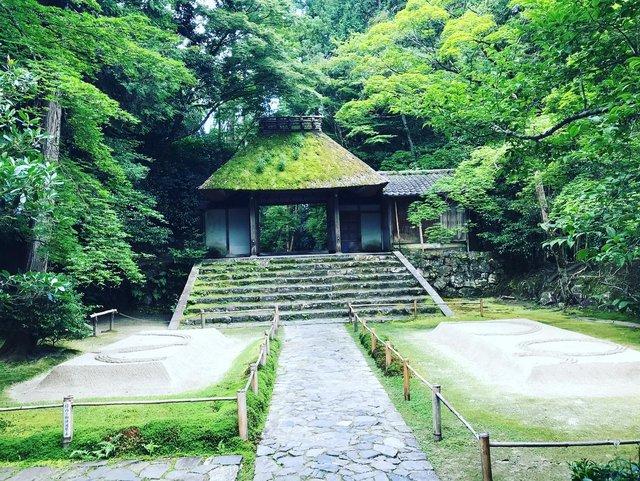 【京都ぶらり】谷崎忌に訪れたい☆清涼感漂う『白砂壇』境内☆鹿ケ谷「法然院」