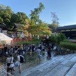 下鴨神社・京の夏の風物詩、足元ひんやり『みたらし祭り・足つけ神事』