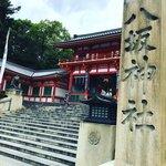 【2021京都祇園祭】厄除けちまき授与中☆一面杉葉の『杉手水』も話題「八坂神社」