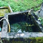 【京都秘境】日本の緑茶発祥地・宇治田原にある知る人ぞ知る幻の温泉場「湯屋谷温泉」