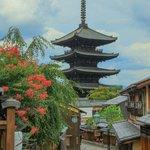 【京都花めぐり】京都の風情を存分に。八坂の塔・知恩院・三条大橋の『サルスベリ』