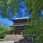 【南禅寺】古都の雅やかな夏の情景。穴場的な蓮池、壮大な三門と水路閣、青もみじ【京都花めぐり】