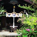 【季節の花】境内に500株ある『萩』も開花☆京都三名水の井戸も「梨木神社」