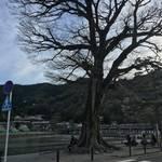 【京都嵐山】渡月橋からすぐ!自慢のお豆腐料理でほっこりと「良彌本店 奥の庭」