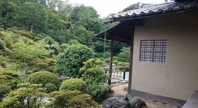 「東雲」窓のある建屋とお庭。