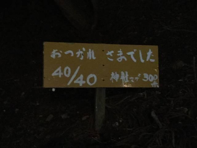 (47636)