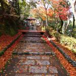 約8000体もの石仏と紅葉、山とのコントラストが見事!境内の奥には竹林も「化野念仏寺(あだしのねんぶつじ)」