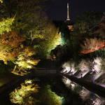 照らされた五重塔と水鏡はまるで鏡の世界!「世界遺産 東寺(教王護国寺)」【360度画像あり】