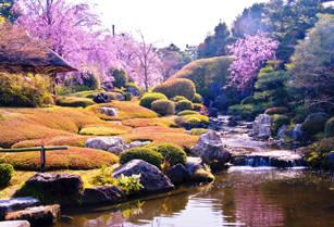 高低差のある池泉回遊式庭園「余香苑」