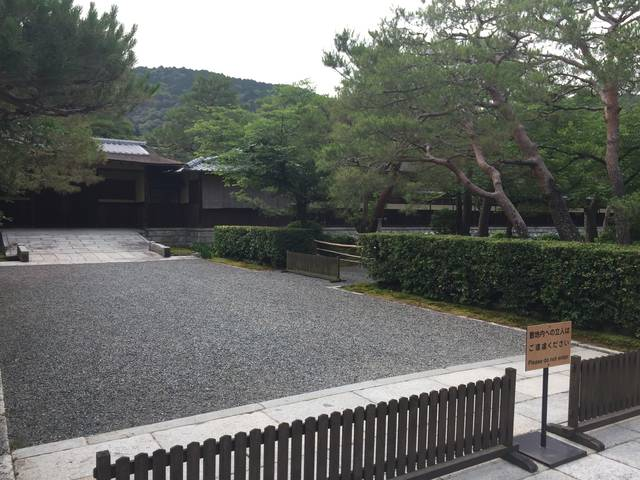 京都季節の花】花菖蒲がそろそろ...