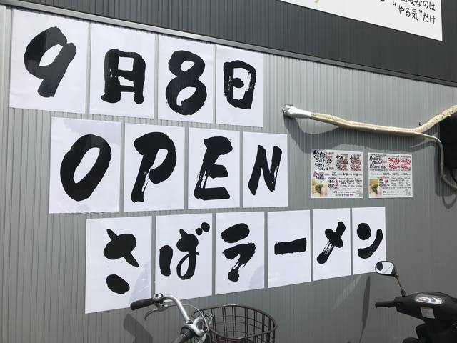 (133265)