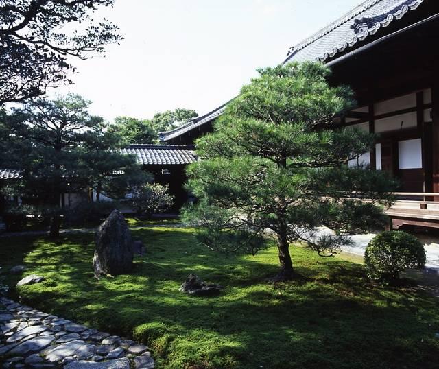 建仁寺両足院 方丈前庭